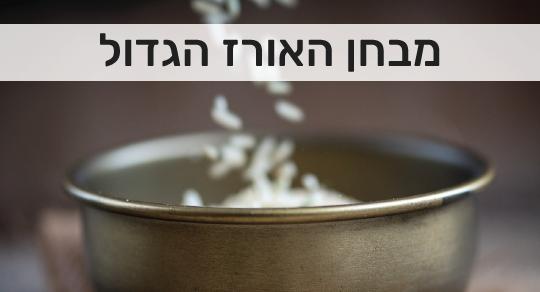 בחנו את עצמכם: כמה אתם באמת יודעים על אורז?