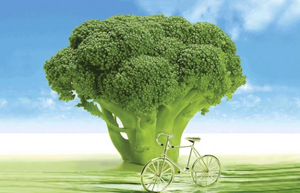 """8 עקרונות דיאטה לחיים בריאים על-פי הרמב""""ם"""