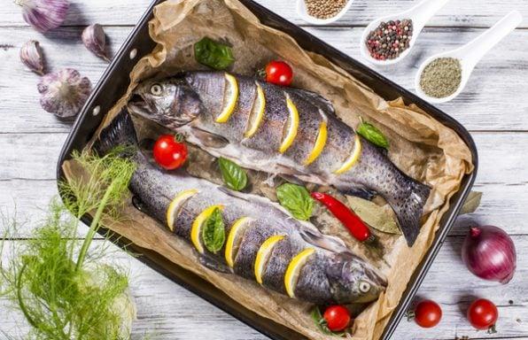מדריך הדגים הגדול: סוגי דגים ואיך כדאי להכין אותם