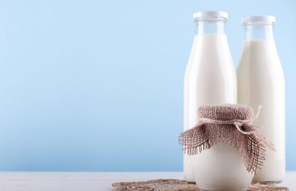 חלב עיזים – ערכים תזונתיים, טיפים ומתכונים